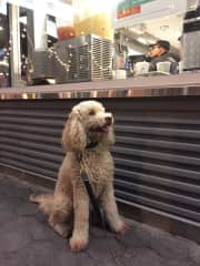 Roxy in the Highline, NYC