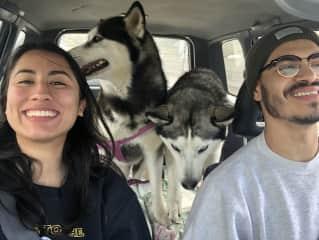 Taking the huskies, Neiko and Maya, to the snow ❤️