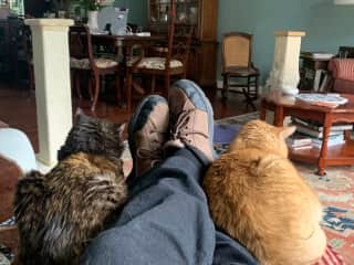 Relaxing with my two cats.
