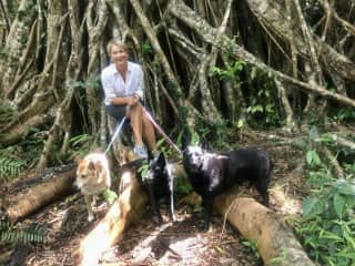 Hiking with Ellie, Pepper and Xena