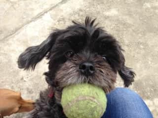 We love to play ball ... Crucita Equador
