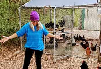 Taking care of the chickens.