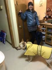 Raincoats and Umbrellas with Niko