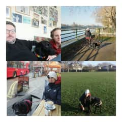 New Year's in London with Lilah the lab