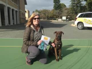 Keeping up Millie's training - graduating Level 2 puppy school