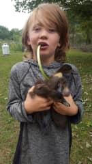 Quinn, the duck whisperer.