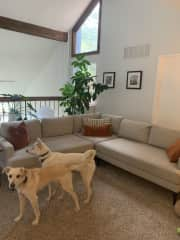 Upstairs loft/tv room