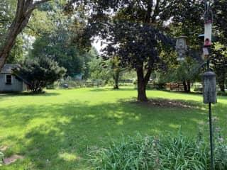 Backyard facing away from house towards fields