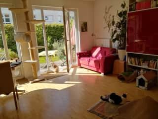 Living room / Terrace