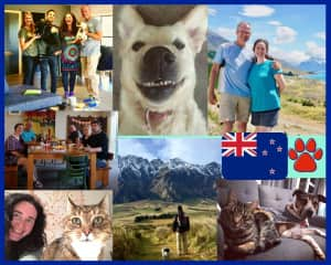 Here in NZ is where it all begun! We had our first housesit in a wonderful home in Queenstown. We loved the experience so much that we decide to live in NZ for 9 months.