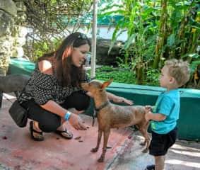 Teaching my grandson about the Mexican Xoloitzcuintli in Puerto Morelos, Mexico.
