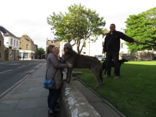 A gracious pet owner in Orkney Scotland lets us love their pets.