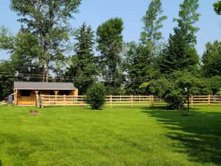 Part of the back yard with the animal barn at rear.