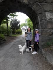 Pet sitting 4 awesome dogs in Holliston MA