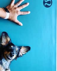 Trying to get involved in yoga!