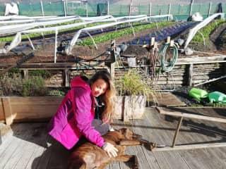 Biviana while doing workaway in Matakana, New Zealand.