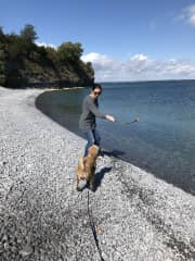 This is our friends' dog last year in Prince Edward County playing fetch.