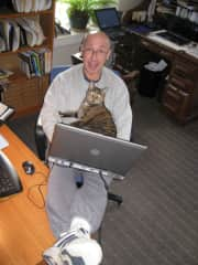 Working With Tiger, my Cat