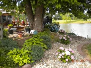 Our backyard.  We love to garden!