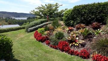 Our gorgeous garden.
