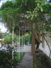 One garden area
