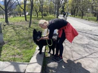 Dogsitting 'Charlie' in Bulgaria..