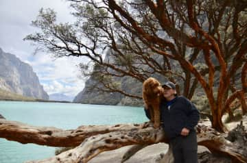 Peruvian highlands with our golden doodle
