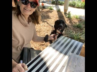 Latest pet sit June 2021.  Me & my Labrador on our walk at a cafe stop. Note the paw on my wrist