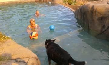 Koda the farm dog and Linda having aswim