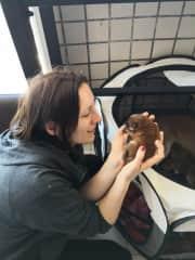 Me with Freddie, newborn Shiba puppy
