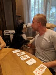 Kevin being interrupted by Jazzy in the middle of playing Bridge.