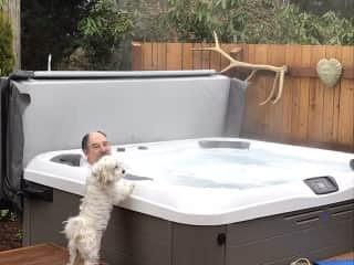 Rascal checking out the hot tub