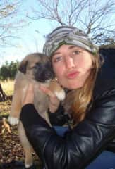 baby pups on a ranch in patagonia