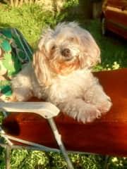 Tara having sun bath