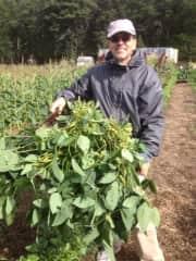 Carlos farming