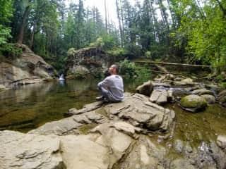 Taking in nature   Whatcom Falls Park, WA