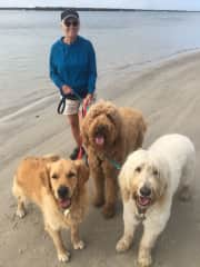 Me with 3 very pampered pooches