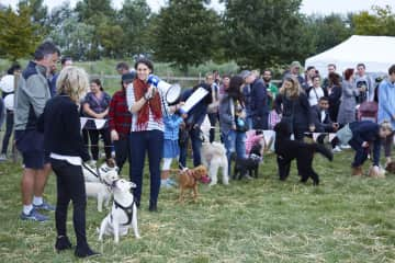 Rilke works for London's largest Urban Farm (Mudchute), here she is presenting a Dog Show...