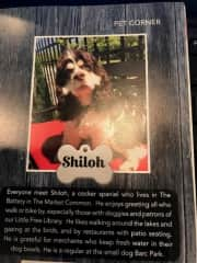 Shiloh was featured in a local magazine