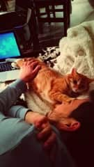 Stefan cuddliing up with Eddie