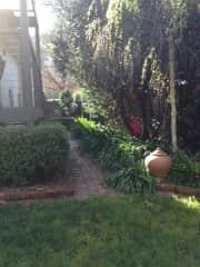 Our back garden - Simon is the gardener in the family
