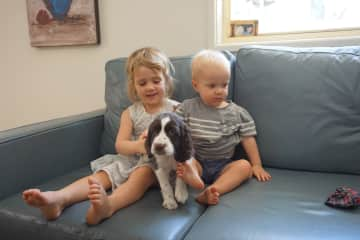 Elena and Kilian meeting our new puppy Jubilee