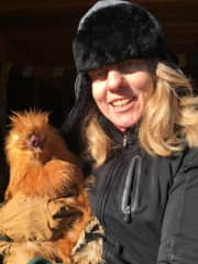 Pamela taking care of chickens