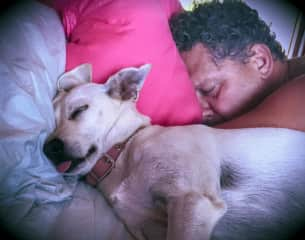 David and one of our long-term sit pets Flauta... they know how to nap!