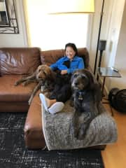 Tomoko with Darby and Ranger chilling on a 10 day sit in Seattle, October 2019.