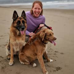 Walking dogs on the beach in Ecuador while housesitting