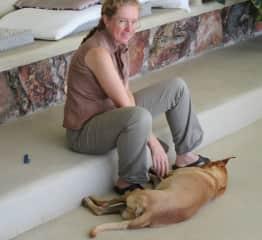 Daily dog spar center against ticks