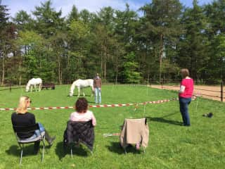 Me teaching a group about Authentic Connection and Heart Intelligent Communication with horses