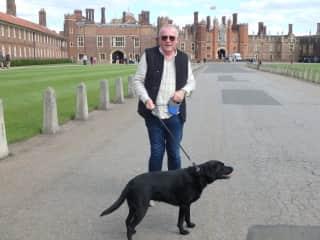 Olive enjoying a walk through Hampton Court