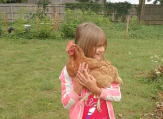 My daughter in england with the tame hen